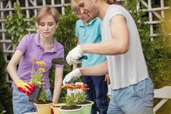 Young mother gardening in front or back yard with her two cute little children. Happy european family enjoying gardening in back yard of their house. Planting stock images