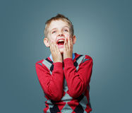 Happy excited child Royalty Free Stock Image