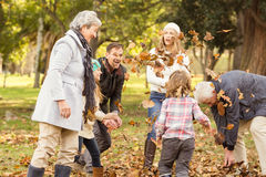 Happy extended family throwing leaves around Royalty Free Stock Photos