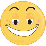 Happy face. A Smiley type happy face Royalty Free Stock Photo