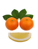 Happy face. Made with fresh fruits. Lemon and mandarin, isolated on a white background Stock Photos