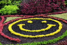 Happy face garden Royalty Free Stock Images
