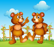 Happy faces of two bears Royalty Free Stock Image