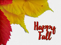 Happy fall congratulation card with yellow and red leaves. Autumn tree leaves and text royalty free illustration