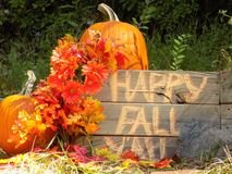 Happy fall yall Royalty Free Stock Images