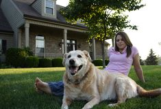 Happy Family. Young Woman & Dog Stock Image