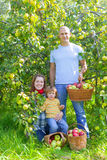 Happy  family  with apple harvest Stock Images