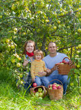 Happy  family  with apple harvest Stock Image