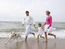 Happy family on the beach. Family running with labrador retriever on the beach Royalty Free Stock Photography