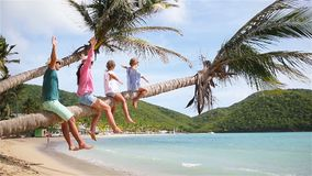 Young family on vacation have a lot of fun on palmtree. Happy family on a beach during summer vacation stock video