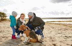 Happy family with beagle dog on beach. Family, pets and people concept - happy mother, father and little daughter with beagle dog on beach in autumn royalty free stock image
