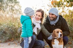 Happy family with beagle dog outdoors in autumn. Family, pets and people concept - happy mother, father and little daughter with beagle dog outdoors in autumn royalty free stock photo