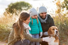 Happy family with beagle dog outdoors in autumn. Family, pets and people concept - happy mother, father and little daughter with beagle dog outdoors in autumn stock photos