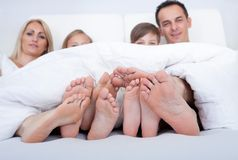 Happy Family In Bed Under Cover Showing Feet Stock Photography