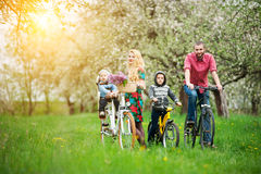 Happy family on a bicycles in the spring garden Royalty Free Stock Image