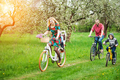Happy family on a bicycles in the spring garden stock photo