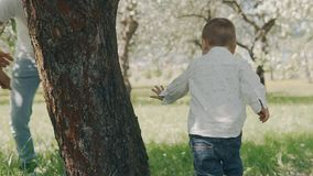 Smiling caucasian parents walking with son in summer apple tree park. Happy family concept. Smiling caucasian parents walking with son son in blooming apple tree stock footage