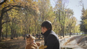 Happy family Dad throws child son up on a walk in the autumn leaf fall in park. stock video footage