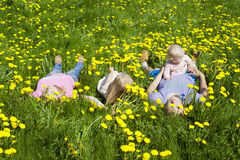 Happy family is in dandelions Stock Photography