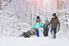 Happy family with dog outdoors in a winter forest. Mother, fother, son and big pet dog. Giant Caucasian Shepherd Dog stock images