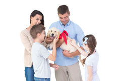 Happy family with dog Royalty Free Stock Images
