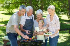Happy family doing barbecue in the park Stock Image
