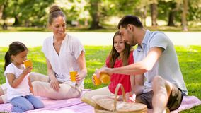 Happy family drinking juice on picnic at park stock video footage