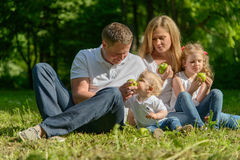 Happy family eating apples on picnic in park Royalty Free Stock Photo