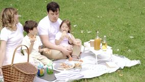 Happy family eating pizza and having fun at the picnic.  stock footage