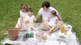 Happy family eating pizza and having fun at the picnic. Happy family eating pizza and having fun at the picnic stock video footage