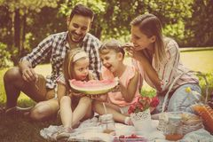Happy family enjoying in picnic together. Family in meadow. stock images