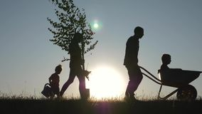 Happy family of farmers with tools at sunset. Silhouette. The family plants a tree in the fresh air. The way of life in stock footage