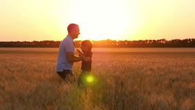 Happy family: father and son playing in a wheat field at sunset. A cute little boy runs to his dad. The man takes the