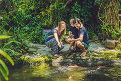 Happy family feeding colorful Catfish in tropical pond Royalty Free Stock Photography