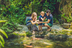 Happy family feeding colorful Catfish in tropical pond Stock Photos