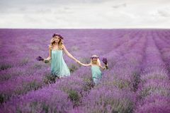 Happy family in a field of lavender stock image
