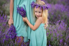 Happy family in a field of lavender royalty free stock photography