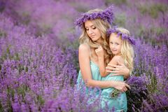 Happy family in a field of lavender. Mom and daughter in a field of lavender stock photo