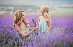 Happy family in a field of lavender stock photos