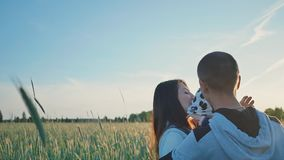 Happy family in a field of wheat among green spikelets in the sun. Together they embrace a little daughter. Beautiful stock footage
