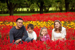 Happy family of four in flowering park Stock Photos