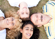 Happy family of four on grass Royalty Free Stock Image