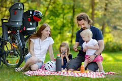 Happy family of four having a picnic Stock Images