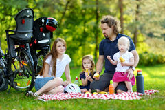 Happy family of four having a picnic Stock Photography