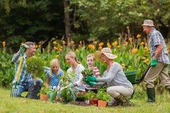 Happy family gardening Stock Photo