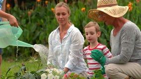 Happy family gardening stock video