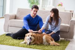The happy family with golden retriever dog Stock Images