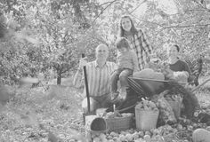 Happy  family with  harvest in  garden Royalty Free Stock Image
