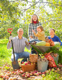 Happy  family with  harvest in garden Stock Photo