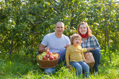 Happy family with  harvested apples Stock Photo